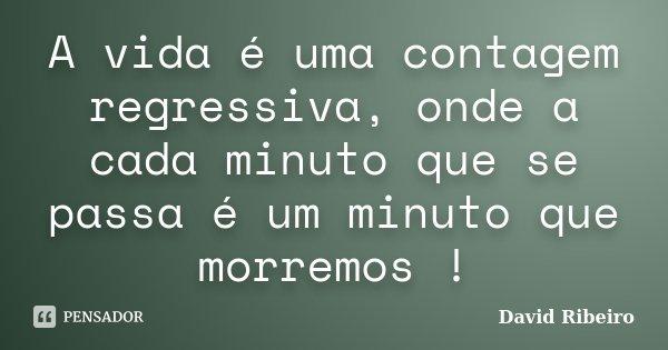 A vida é uma contagem regressiva, onde a cada minuto que se passa é um minuto que morremos !... Frase de David Ribeiro.