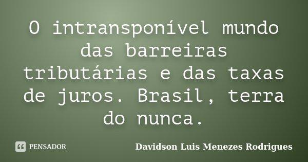 O intransponível mundo das barreiras tributárias e das taxas de juros. Brasil, terra do nunca.... Frase de Davidson Luis Menezes Rodrigues.