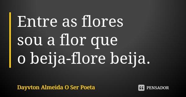 Entre as flores sou a flor que o beija-flore beija.... Frase de Dayvton Almeida O Ser Poeta.