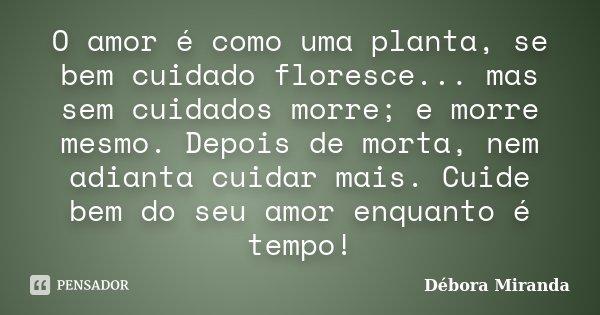 O amor é como uma planta, se bem cuidado floresce... mas sem cuidados morre; e morre mesmo. Depois de morta, nem adianta cuidar mais. Cuide bem do seu amor enqu... Frase de Débora Miranda.