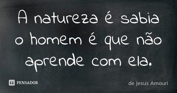 A natureza é sabia o homem é que não aprende com ela.... Frase de de Jesus Amauri.