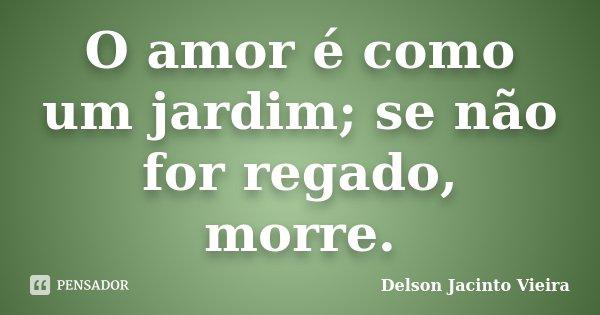 O amor é como um jardim; se não for regado, morre.... Frase de Delson Jacinto Vieira.