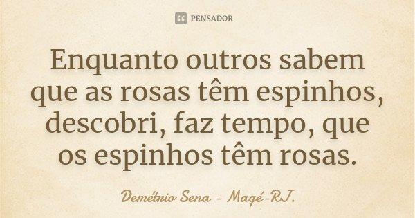 Enquanto outros sabem que as rosas têm espinhos, descobri, faz tempo, que os espinhos têm rosas.... Frase de Demétrio Sena - Magé-RJ..