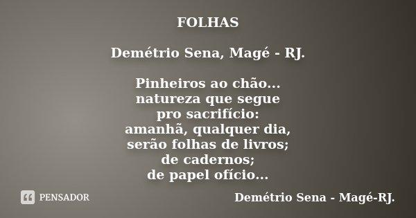 FOLHAS Demétrio Sena, Magé - RJ. Pinheiros ao chão... natureza que segue pro sacrifício: amanhã, qualquer dia, serão folhas de livros; de cadernos; de papel ofí... Frase de Demétrio Sena, Magé - RJ..