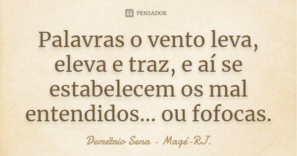 Palavras o vento leva, eleva e traz, e aí se estabelecem os mal entendidos... ou fofocas.... Frase de Demétrio Sena - Magé-RJ..