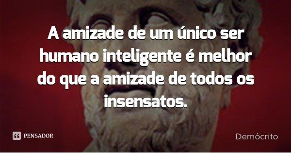A amizade de um único ser humano inteligente é melhor do que a amizade de todos os insensatos.... Frase de Demócrito.