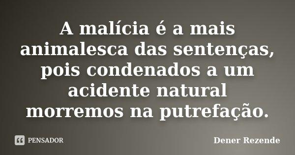 A malícia é a mais animalesca das sentenças, pois condenados a um acidente natural morremos na putrefação.... Frase de Dener Rezende.