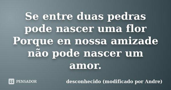 Se entre duas pedras pode nascer uma flor Porque en nossa amizade não pode nascer um amor.... Frase de desconhecido (modificado por Andre).