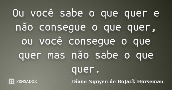 Ou você sabe o que quer e não consegue o que quer, ou você consegue o que quer mas não sabe o que quer.... Frase de Diane Nguyen de BoJack Horseman.