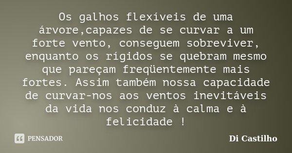 Os galhos flexíveis de uma árvore,capazes de se curvar a um forte vento, conseguem sobreviver, enquanto os rígidos se quebram mesmo que pareçam freqüentemente m... Frase de Di Castilho.