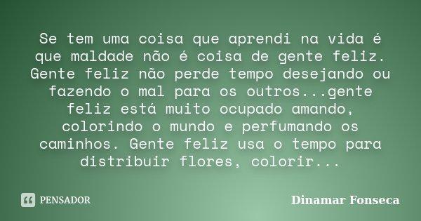 Se Tem Uma Coisa Que Aprendi Na Vida é Dinamar Fonseca