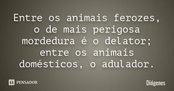 Entre os animais ferozes, o de mais perigosa mordedura é o delator; entre os animais domésticos, o adulador.... Frase de Diógenes.