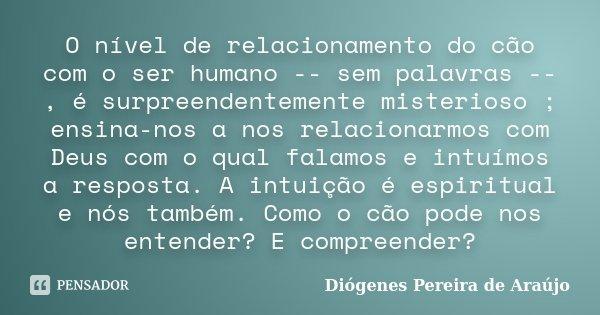 O nível de relacionamento do cão com o ser humano -- sem palavras --, é surpreendentemente misterioso ; ensina-nos a nos relacionarmos com Deus com o qual falam... Frase de Diógenes Pereira de Araújo.