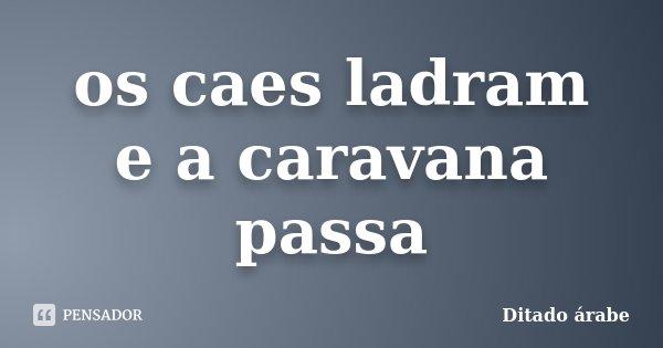 os caes ladram e a caravana passa... Frase de ditado arabe.