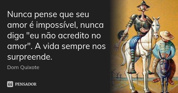 """Nunca pense que seu amor é impossível, nunca diga """"eu não acredito no amor"""". A vida sempre nos surpreende.... Frase de Dom Quixote."""