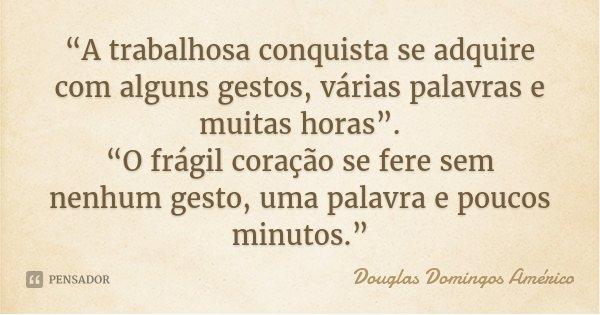 """""""A trabalhosa conquista se adquire com alguns gestos, várias palavras e muitas horas"""". """"O frágil coração se fere sem nenhum gesto, uma palavra e poucos minutos.... Frase de Douglas Domingos Américo."""