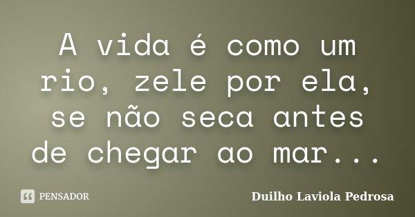 A vida é como um rio, zele por ela, se não seca antes de chegar ao mar...... Frase de Duilho Laviola Pedrosa.