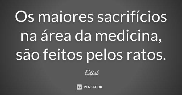 Os maiores sacrifícios na área da medicina, são feitos pelos ratos.... Frase de Ediel.