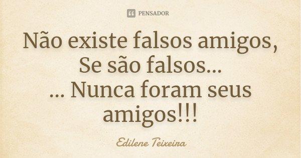 Não existe falsos amigos, Se são falsos... ... Nunca foram seus amigos!!!... Frase de Edilene Teixeira.
