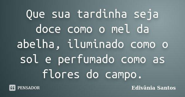 Que sua tardinha seja doce como o mel da abelha, iluminado como o sol e perfumado como as flores do campo.... Frase de Edivânia Santos.