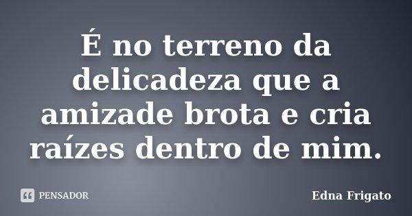 É no terreno da delicadeza que a amizade brota e cria raízes dentro de mim.... Frase de Edna Frigato.