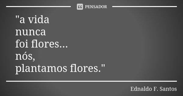 """""""a vida nunca foi flores... nós, plantamos flores.""""... Frase de Ednaldo F. Santos."""