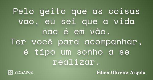 Pelo geito que as coisas vao, eu sei que a vida nao é em vão. Ter você para acompanhar, é tipo um sonho a se realizar.... Frase de Ednei Oliveira Argolo.