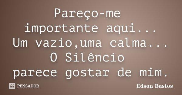 Pareço-me importante aqui... Um vazio,uma calma... O Silêncio parece gostar de mim.... Frase de Edson Bastos.