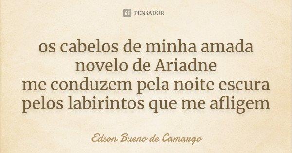 os cabelos de minha amada novelo de Ariadne me conduzem pela noite escura pelos labirintos que me afligem... Frase de Edson Bueno de Camargo.