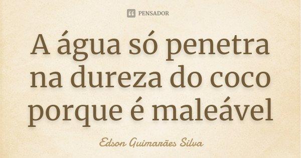 A água só penetra na dureza do coco porque é maleável... Frase de Edson Guimarães Silva.