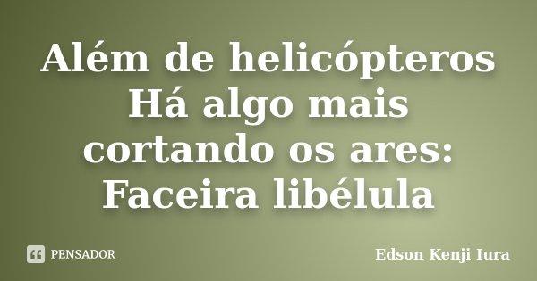 Além de helicópteros Há algo mais cortando os ares: Faceira libélula... Frase de Edson Kenji Iura.