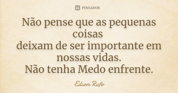 Não pense que as pequenas coisas deixam de ser importante em nossas vidas. Não tenha Medo enfrente.... Frase de Edson Rufo.