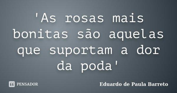 'As rosas mais bonitas são aquelas que suportam a dor da poda'... Frase de Eduardo de Paula Barreto.