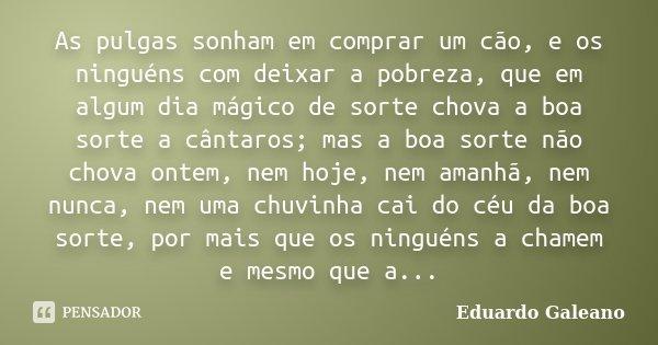 As pulgas sonham em comprar um cão, e os ninguéns com deixar a pobreza, que em algum dia mágico de sorte chova a boa sorte a cântaros; mas a boa sorte não chova... Frase de Eduardo Galeano.