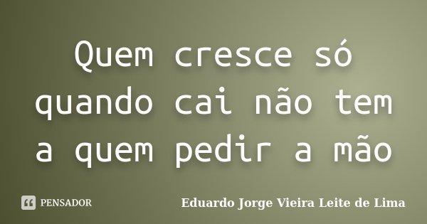 Quem cresce só quando cai não tem a quem pedir a mão... Frase de Eduardo Jorge Vieira Leite de Lima.