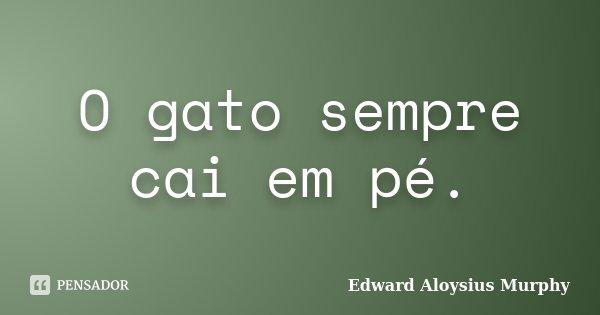 O gato sempre cai em pé.... Frase de Edward Aloysius Murphy.