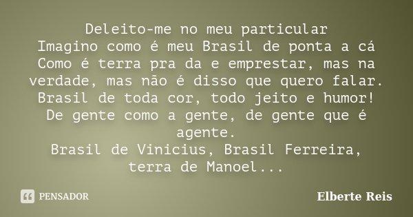Deleito-me no meu particular Imagino como é meu Brasil de ponta a cá Como é terra pra da e emprestar, mas na verdade, mas não é disso que quero falar. Brasil de... Frase de Elberte Reis.