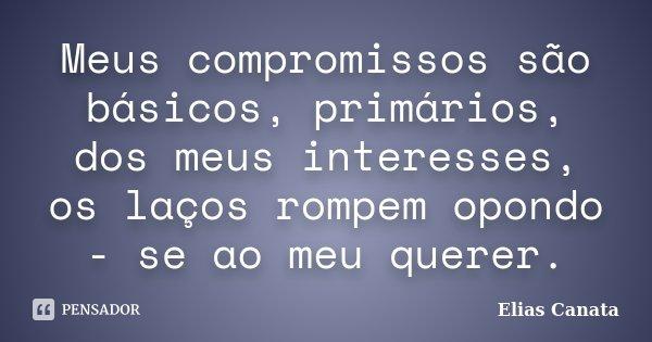Meus compromissos são básicos, primários, dos meus interesses, os laços rompem opondo - se ao meu querer.... Frase de Elias Canata.