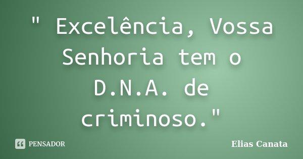 """"""" Excelência, Vossa Senhoria tem o D.N.A. de criminoso.""""... Frase de Elias Canata."""