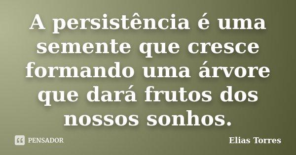 A persistência é uma semente que cresce formando uma árvore que dará frutos dos nossos sonhos.... Frase de Elias Torres.