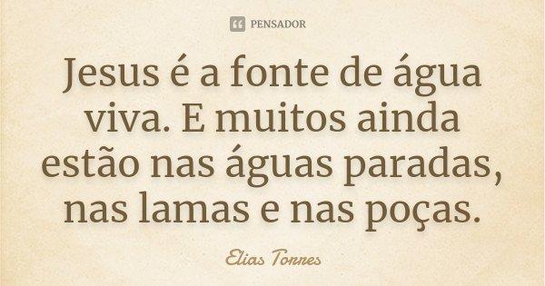 Jesus é a fonte de água viva. E muitos ainda estão nas águas paradas, nas lamas e nas poças.... Frase de Elias Torres.