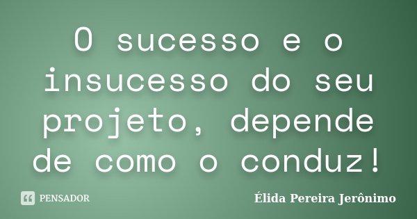 O sucesso e o insucesso do seu projeto, depende de como o conduz!... Frase de Élida Pereira Jerônimo.