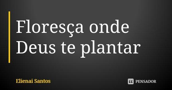 Floresça Onde Deus Te Plantar Elienai Santos