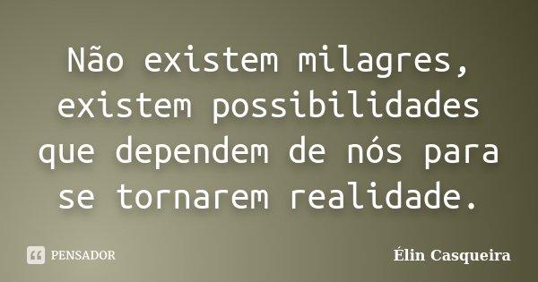 Não existem milagres, existem possibilidades que dependem de nós para se tornarem realidade.... Frase de Elin Casqueira.