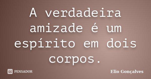 A verdadeira amizade é um espírito em dois corpos.... Frase de Elio Gonçalves.