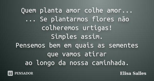 Quem planta amor colhe amor... ... Se plantarmos flores não colheremos urtigas! Simples assim. Pensemos bem em quais as sementes que vamos atirar ao longo da no... Frase de Elisa Salles.