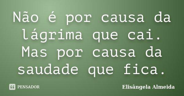 Não é por causa da lágrima que cai. Mas por causa da saudade que fica.... Frase de Elisângela Almeida.