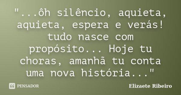 """""""...ôh silêncio, aquieta, aquieta, espera e verás! tudo nasce com propósito... Hoje tu choras, amanhã tu conta uma nova história...""""... Frase de Elizaete Ribeiro."""