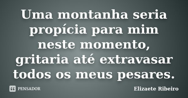 Uma montanha seria propícia para mim neste momento, gritaria até extravasar todos os meus pesares.... Frase de Elizaete Ribeiro.