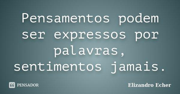 Pensamentos podem ser expressos por palavras, sentimentos jamais.... Frase de Elizandro Echer.